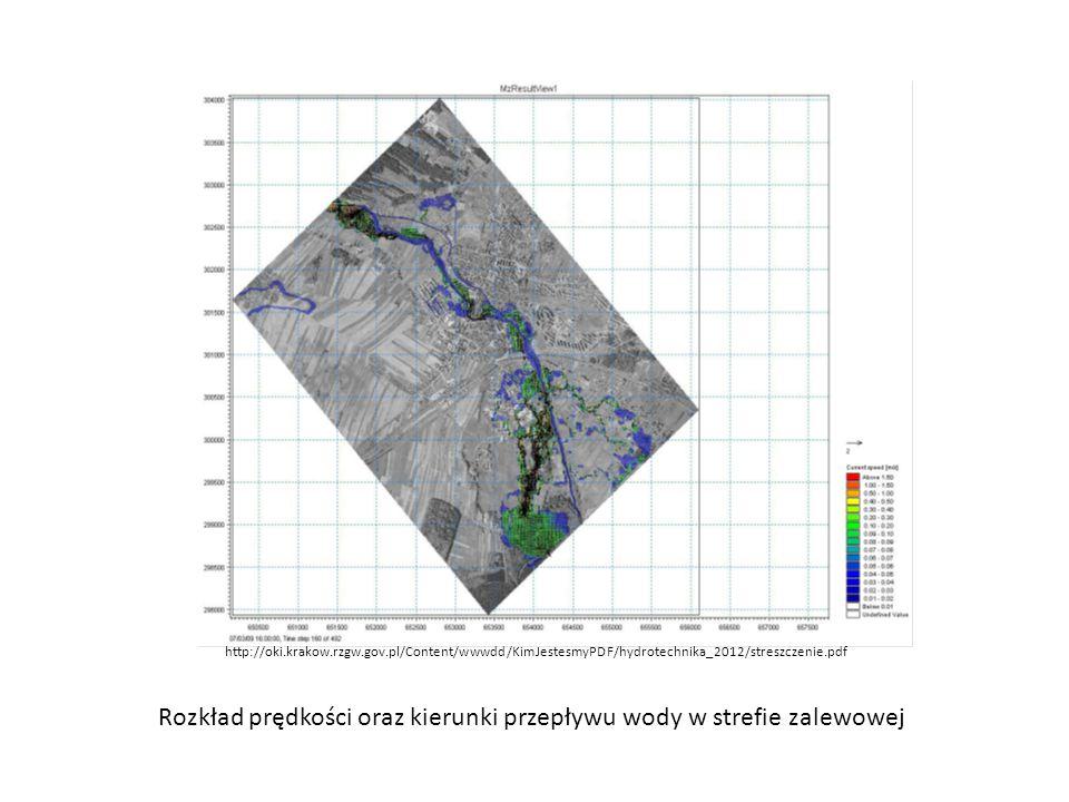 Rozkład prędkości oraz kierunki przepływu wody w strefie zalewowej