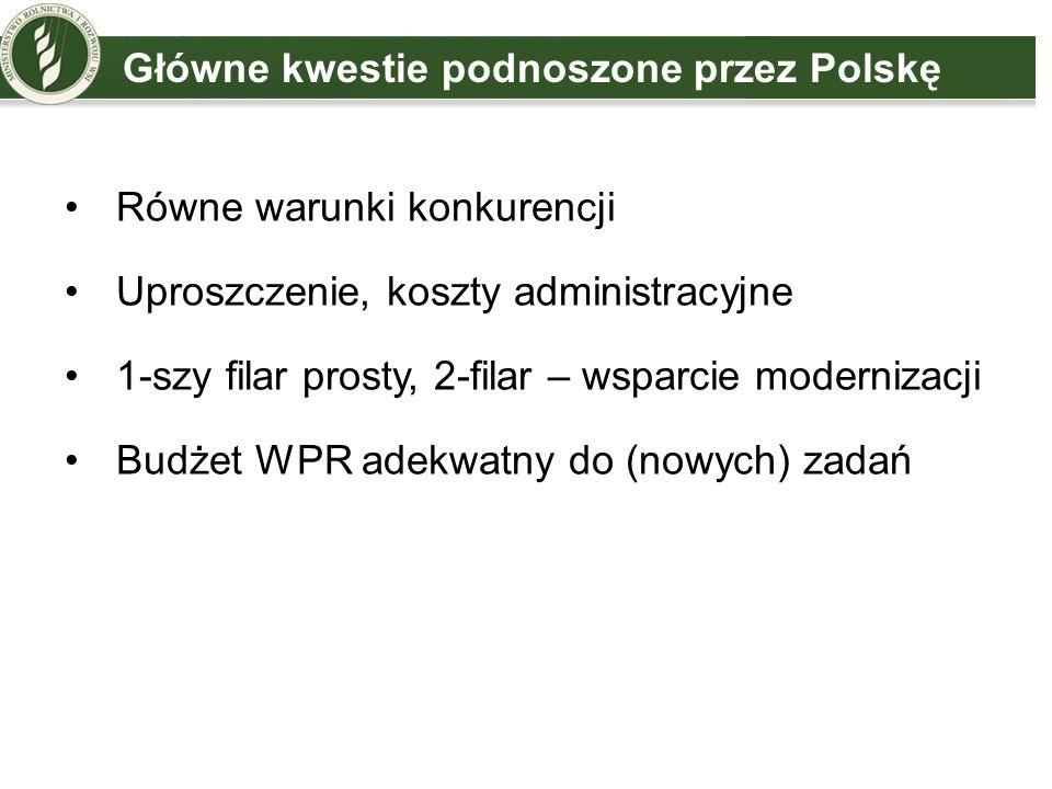Główne kwestie podnoszone przez Polskę