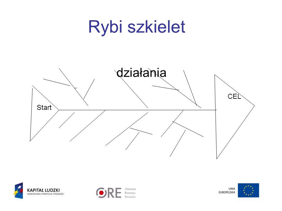 Rybi szkielet działania CEL Start