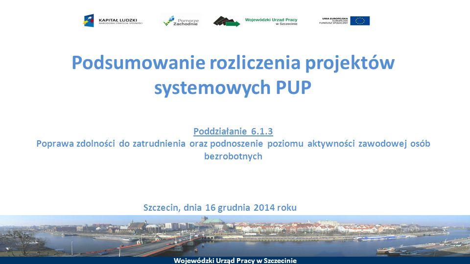 Podsumowanie rozliczenia projektów systemowych PUP