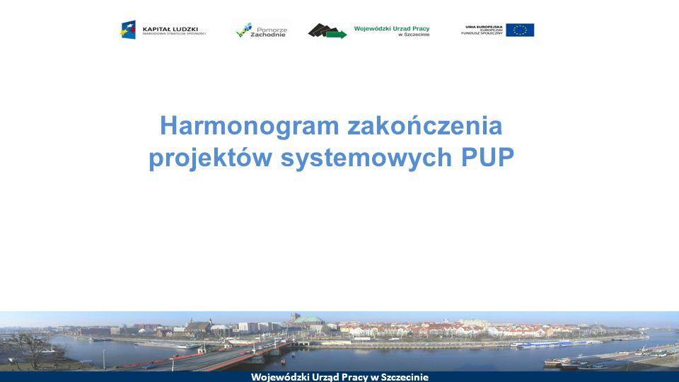 Harmonogram zakończenia projektów systemowych PUP