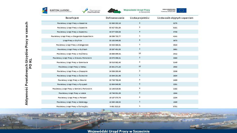 Aktywność Powiatowych Urzędów Pracy w ramach PO KL