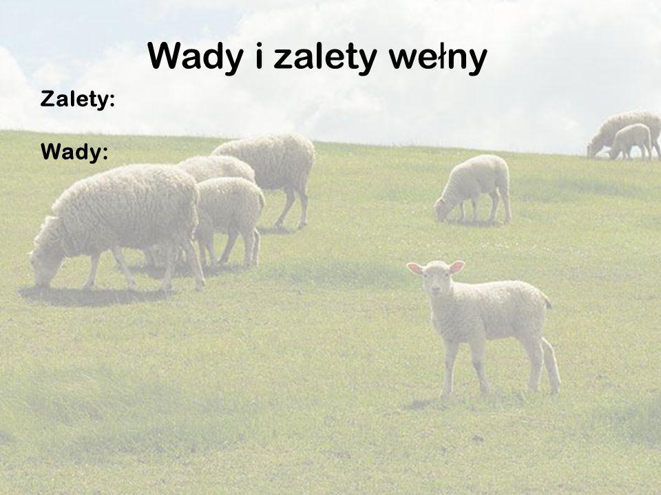Wady i zalety wełny Zalety: Wady: