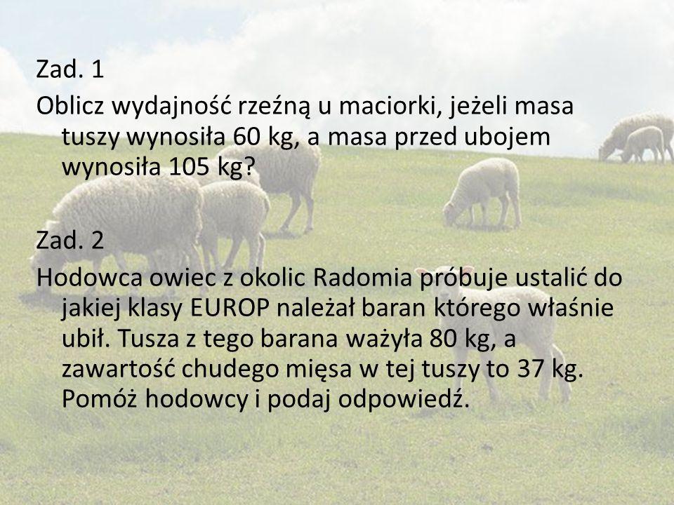 Zad. 1 Oblicz wydajność rzeźną u maciorki, jeżeli masa tuszy wynosiła 60 kg, a masa przed ubojem wynosiła 105 kg