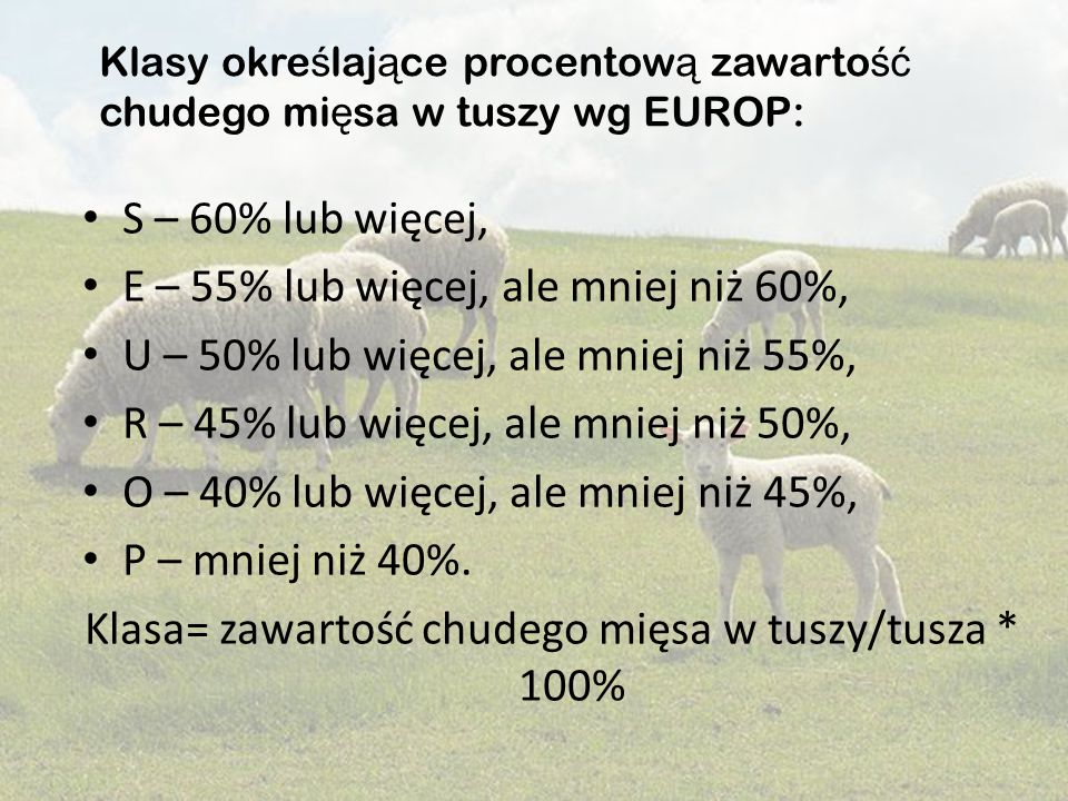 Klasa= zawartość chudego mięsa w tuszy/tusza * 100%