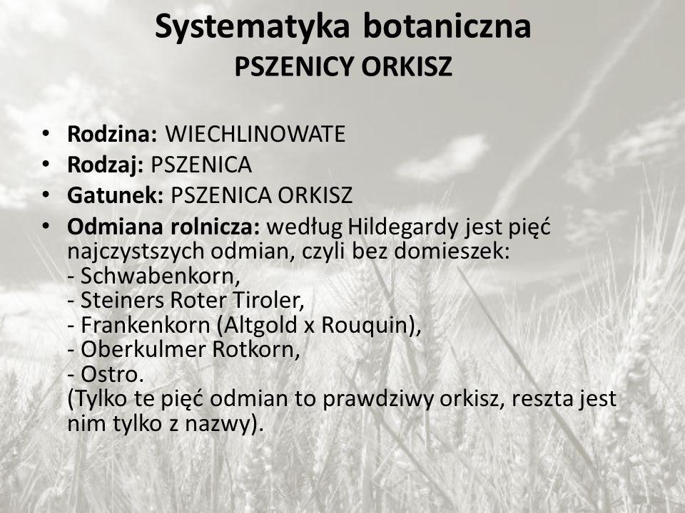 Systematyka botaniczna PSZENICY ORKISZ