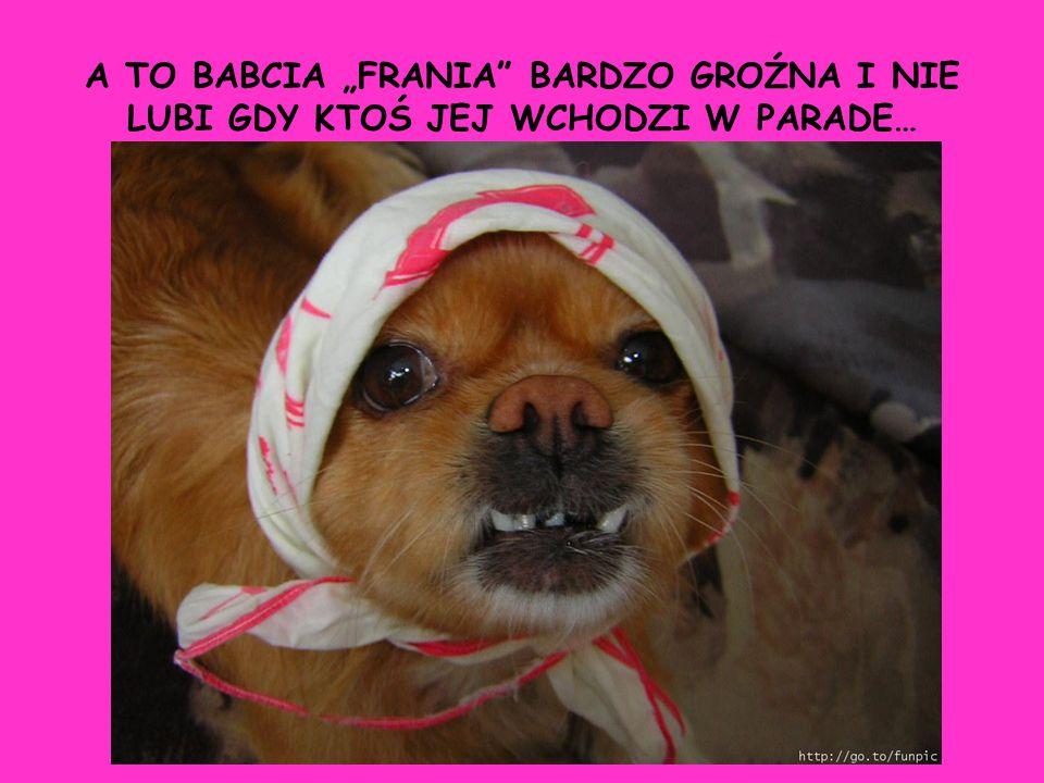 """A TO BABCIA """"FRANIA BARDZO GROŹNA I NIE LUBI GDY KTOŚ JEJ WCHODZI W PARADE…"""