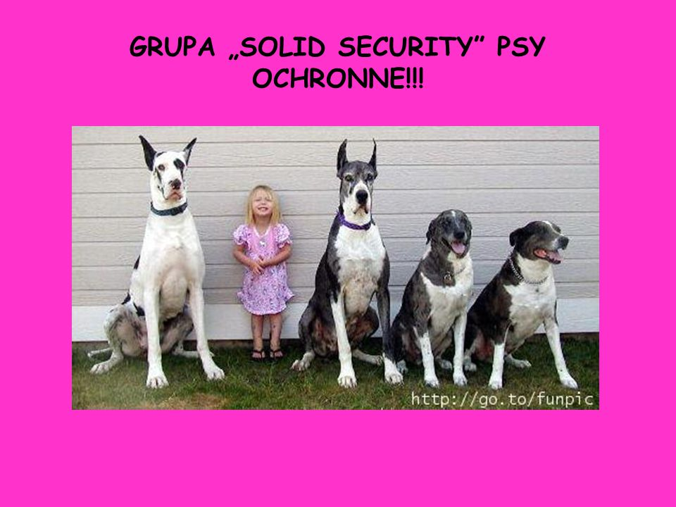 "GRUPA ""SOLID SECURITY PSY OCHRONNE!!!"