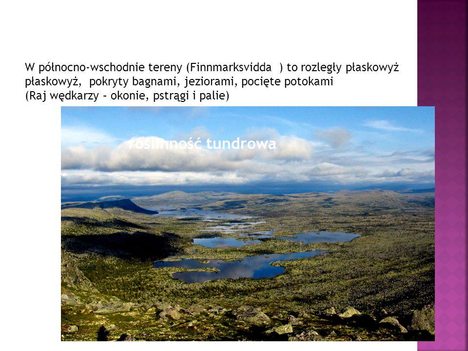 W północno-wschodnie tereny (Finnmarksvidda ) to rozległy płaskowyż płaskowyż, pokryty bagnami, jeziorami, pocięte potokami