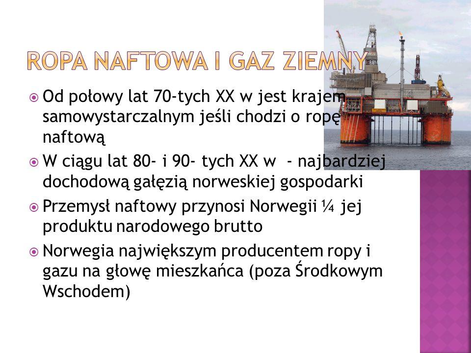 Ropa naftowa i Gaz ziemny