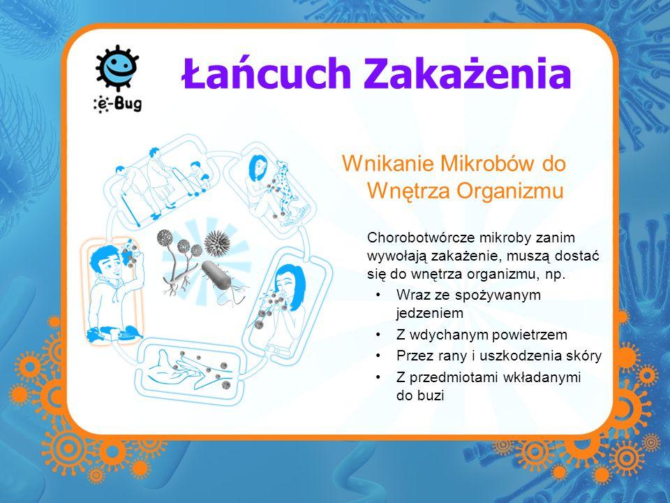 Łańcuch Zakażenia Wnikanie Mikrobów do Wnętrza Organizmu