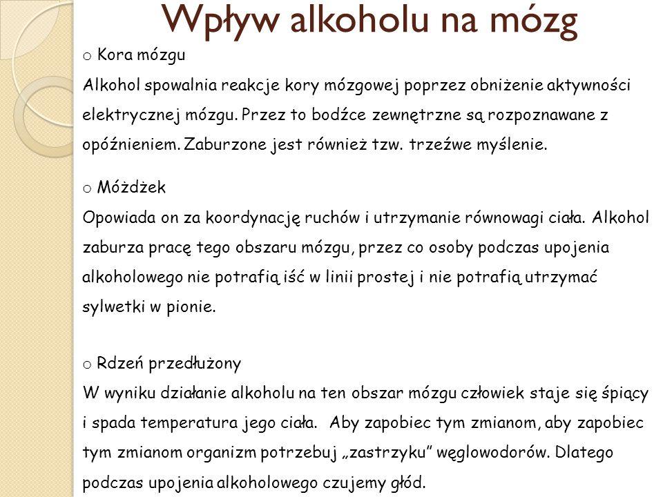 Wpływ alkoholu na mózg Kora mózgu