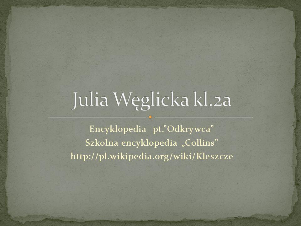 Julia Węglicka kl.2a Encyklopedia pt. Odkrywca