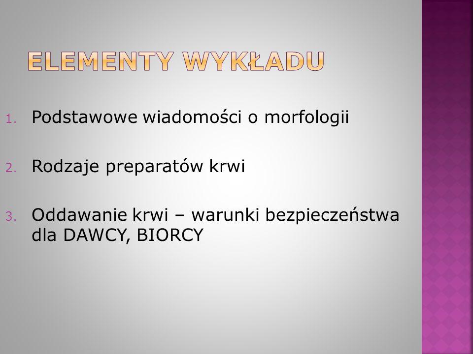Elementy wykładu Podstawowe wiadomości o morfologii