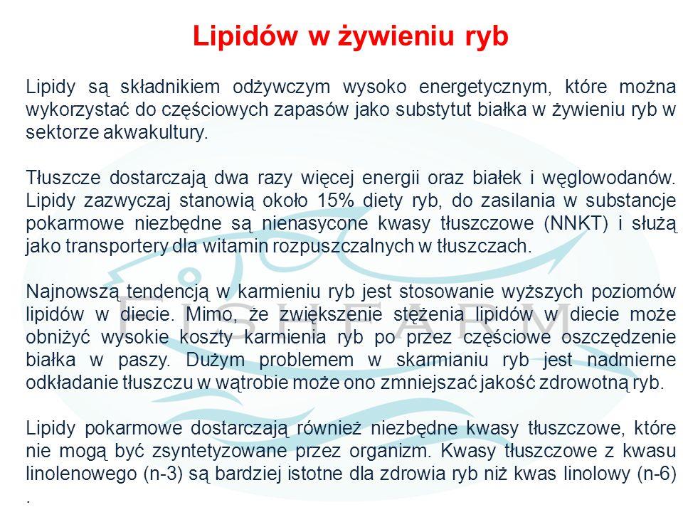 Lipidów w żywieniu ryb