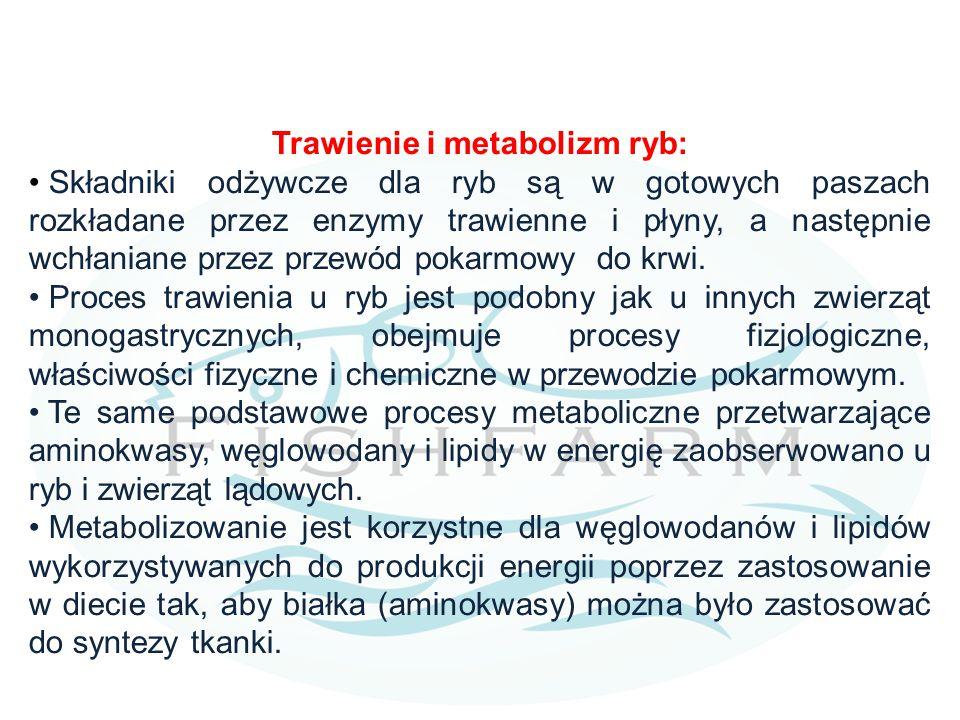 Trawienie i metabolizm ryb: