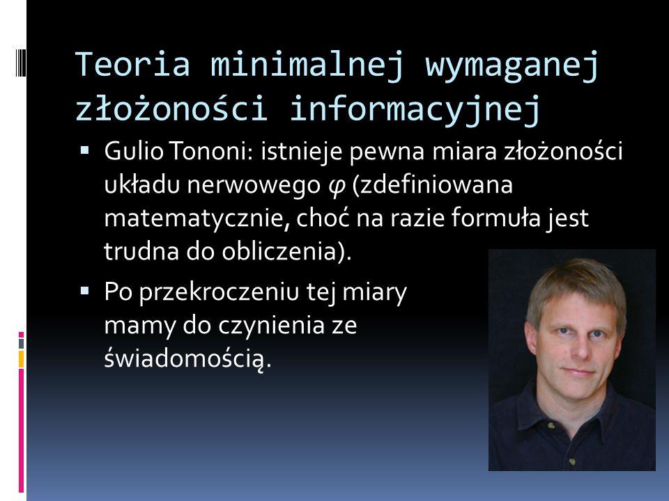 Teoria minimalnej wymaganej złożoności informacyjnej