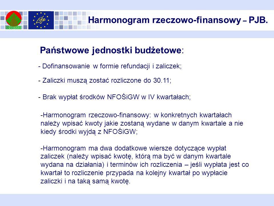Harmonogram rzeczowo-finansowy – PJB.