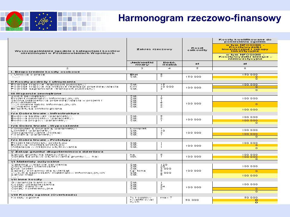 Harmonogram rzeczowo-finansowy