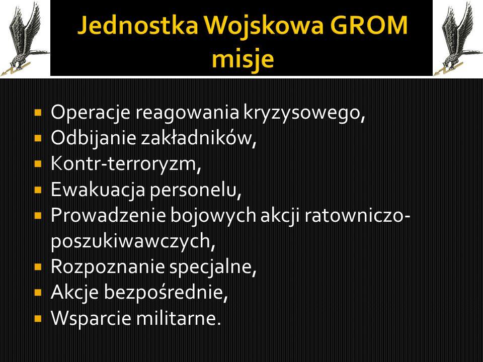 Jednostka Wojskowa GROM misje