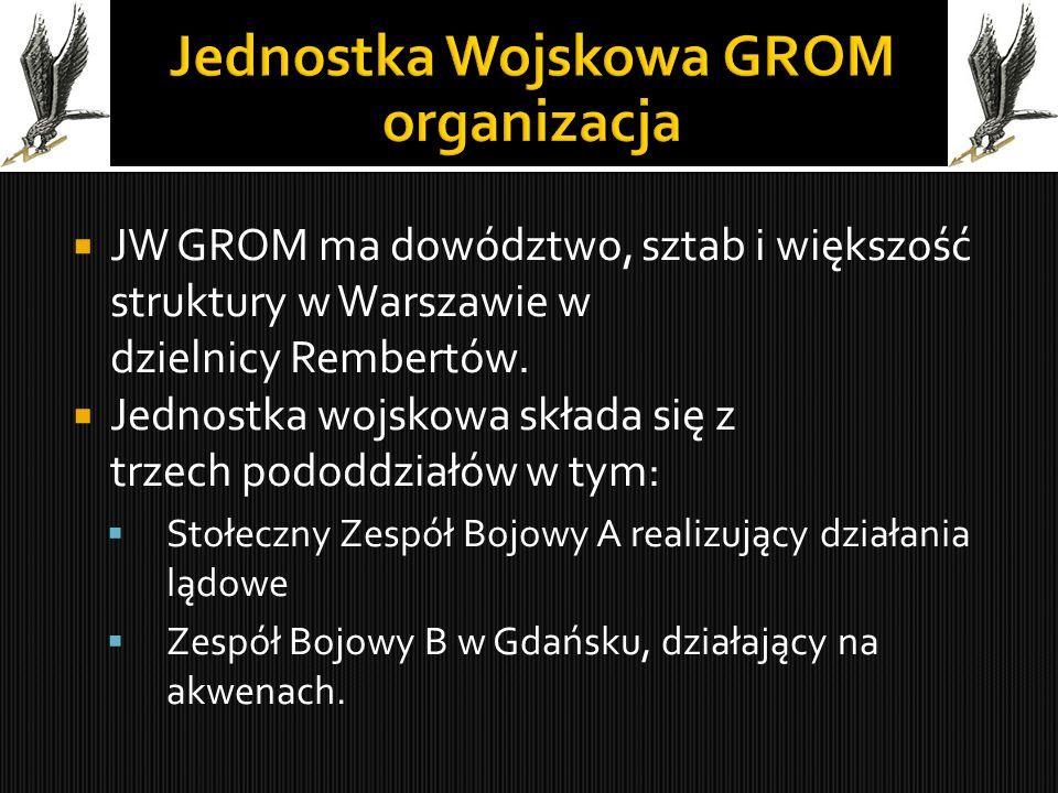 Jednostka Wojskowa GROM organizacja