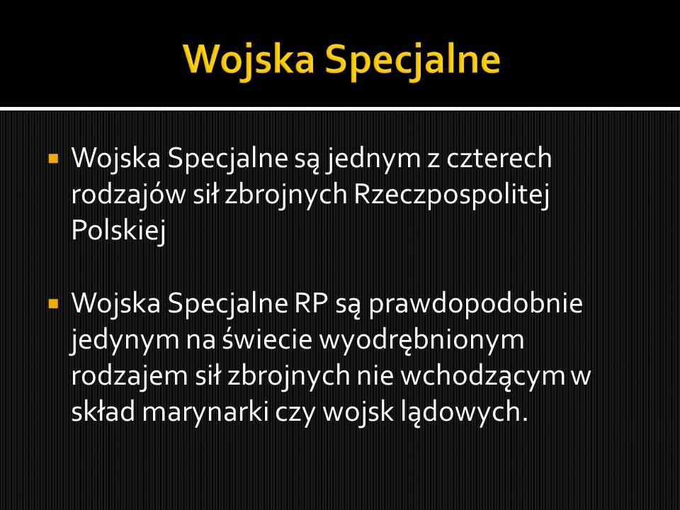 Wojska Specjalne Wojska Specjalne są jednym z czterech rodzajów sił zbrojnych Rzeczpospolitej Polskiej.