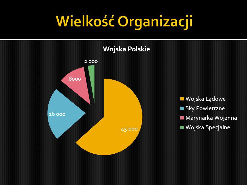 Wielkość Organizacji