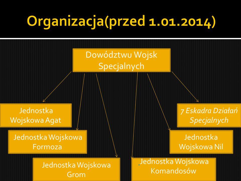 Organizacja(przed 1.01.2014) Dowództwu Wojsk Specjalnych
