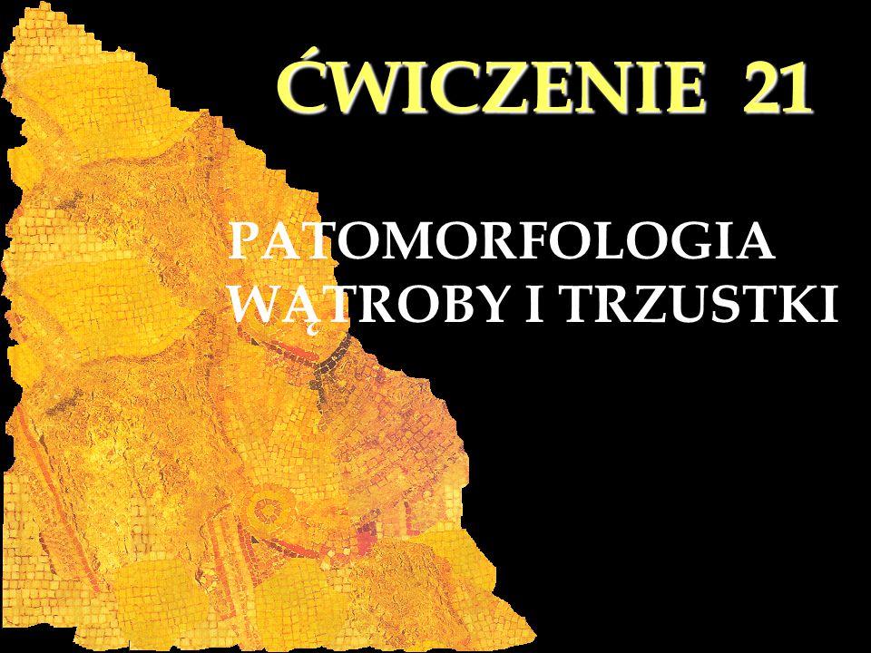 ĆWICZENIE 21 PATOMORFOLOGIA WĄTROBY I TRZUSTKI