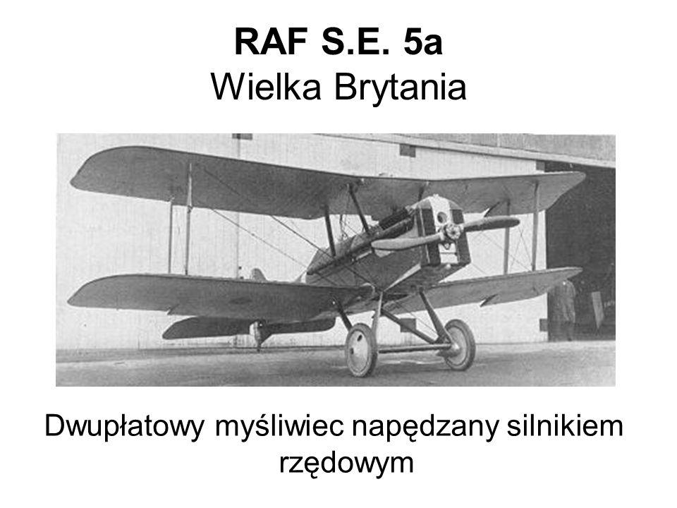 RAF S.E. 5a Wielka Brytania