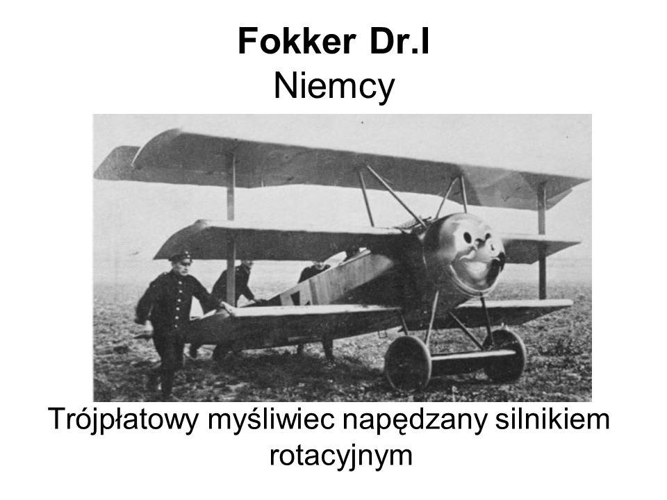 Trójpłatowy myśliwiec napędzany silnikiem rotacyjnym