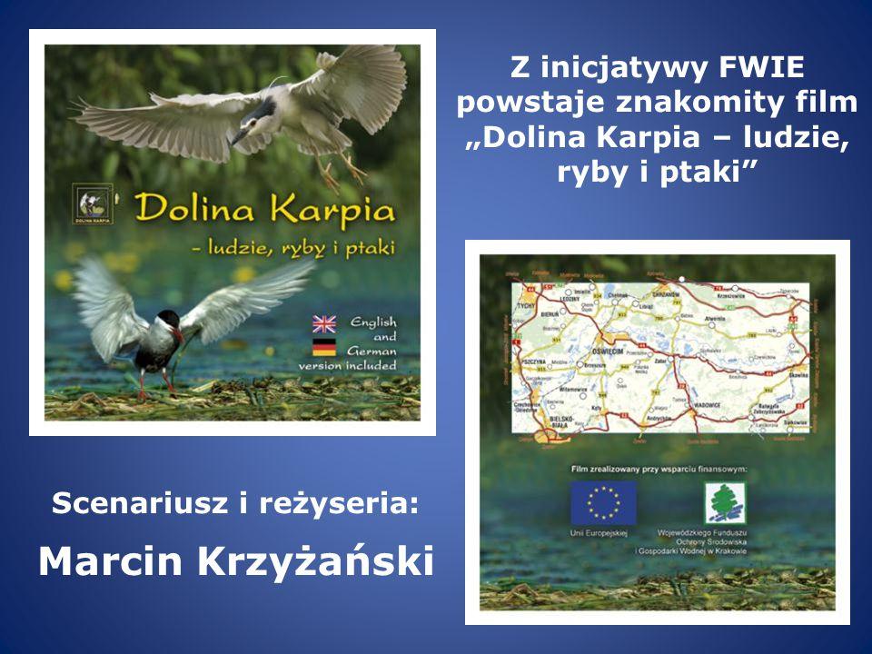 Scenariusz i reżyseria: Marcin Krzyżański