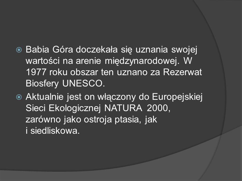 Babia Góra doczekała się uznania swojej wartości na arenie międzynarodowej. W 1977 roku obszar ten uznano za Rezerwat Biosfery UNESCO.