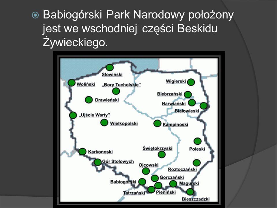 Babiogórski Park Narodowy położony jest we wschodniej części Beskidu Żywieckiego.