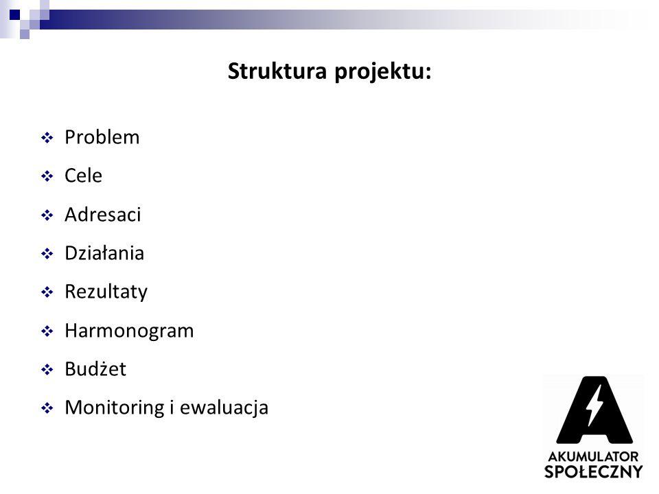 Struktura projektu: Problem Cele Adresaci Działania Rezultaty