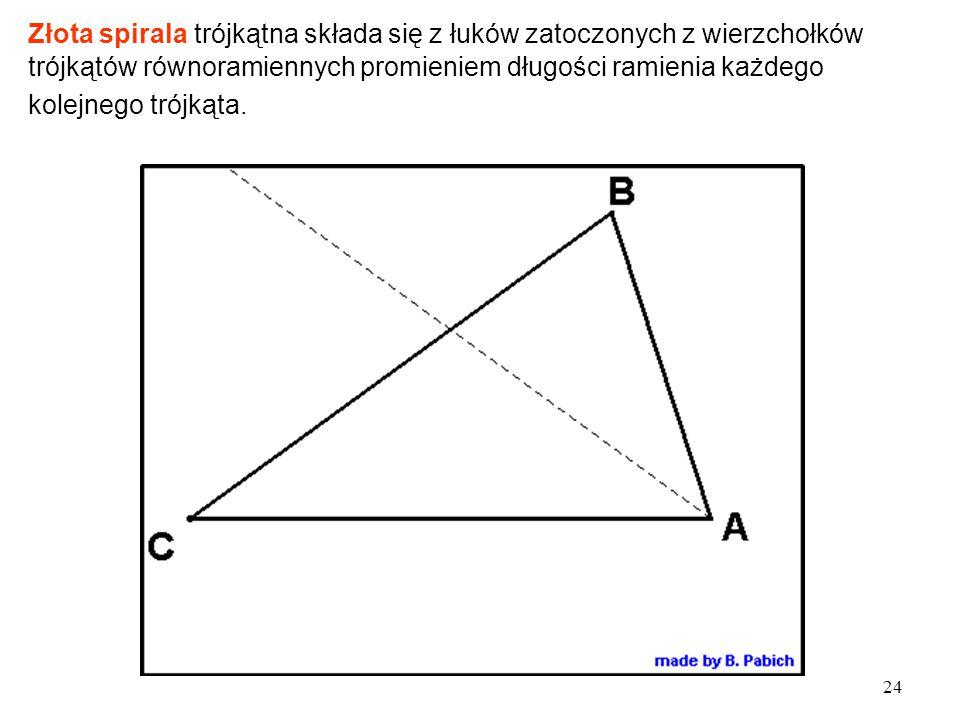 Złota spirala trójkątna składa się z łuków zatoczonych z wierzchołków trójkątów równoramiennych promieniem długości ramienia każdego kolejnego trójkąta.