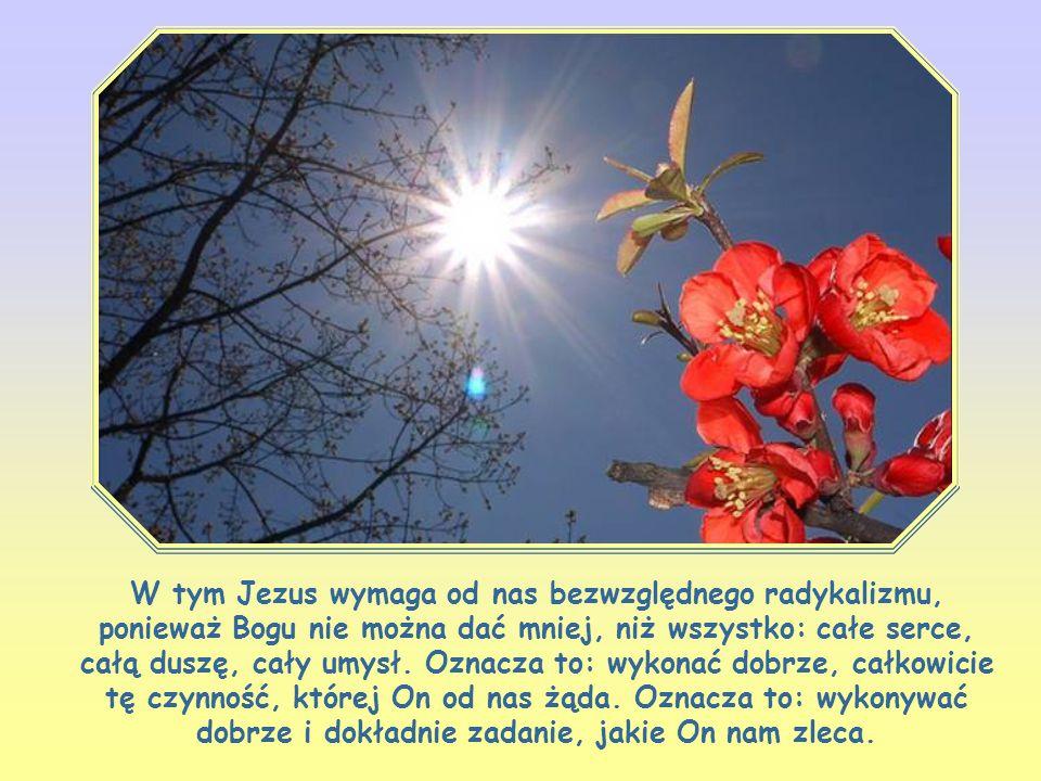 W tym Jezus wymaga od nas bezwzględnego radykalizmu, ponieważ Bogu nie można dać mniej, niż wszystko: całe serce, całą duszę, cały umysł.