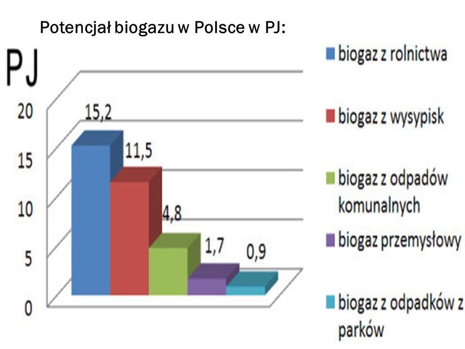 Potencjał biogazu w Polsce w PJ: