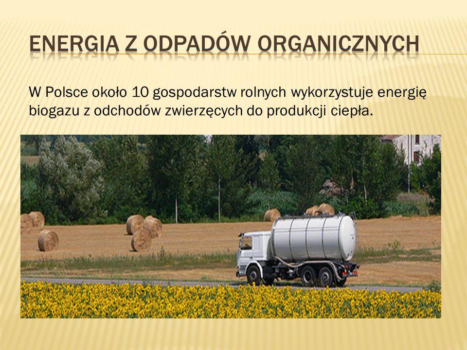 Energia z odpadów organicznych