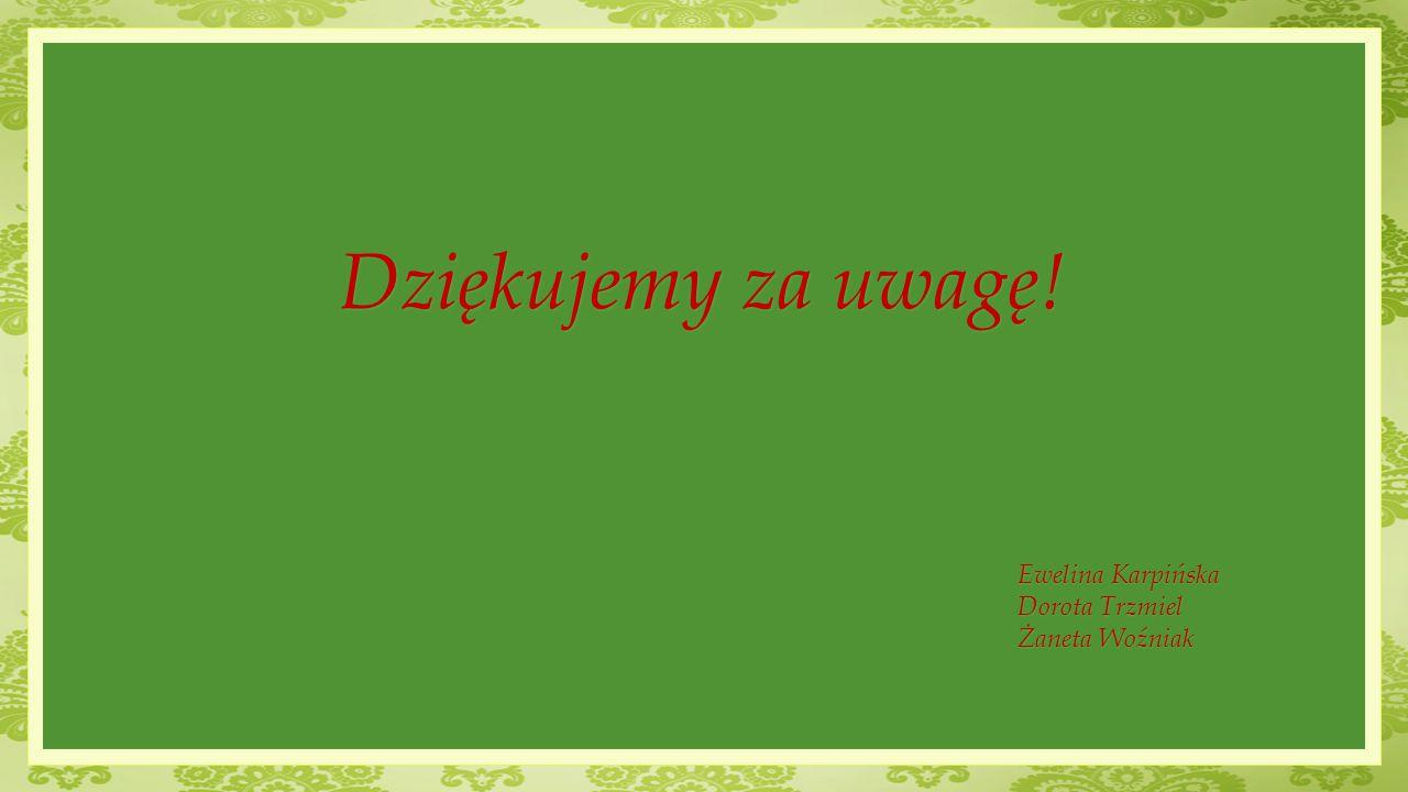 Dziękujemy za uwagę! Ewelina Karpińska Dorota Trzmiel Żaneta Woźniak