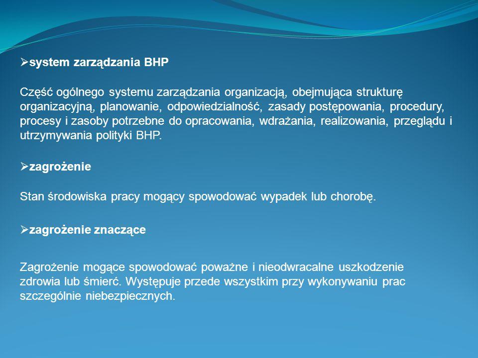 system zarządzania BHP