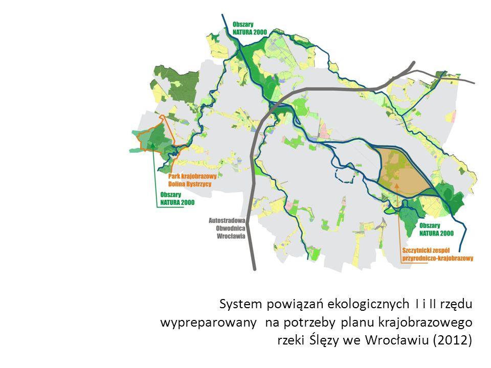 System powiązań ekologicznych I i II rzędu wypreparowany na potrzeby planu krajobrazowego rzeki Ślęzy we Wrocławiu (2012)