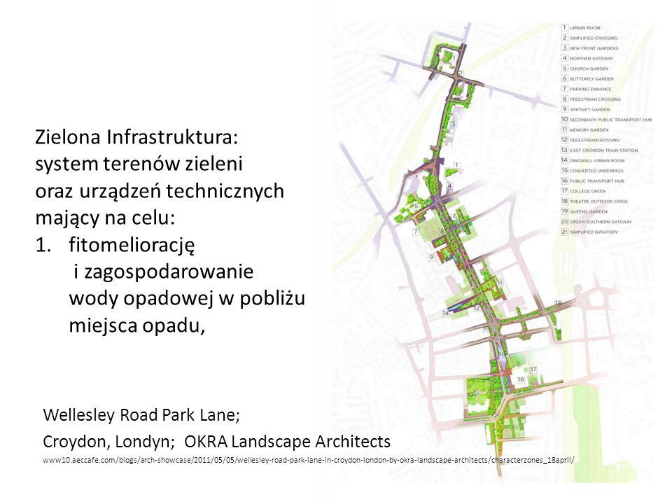 Zielona Infrastruktura:
