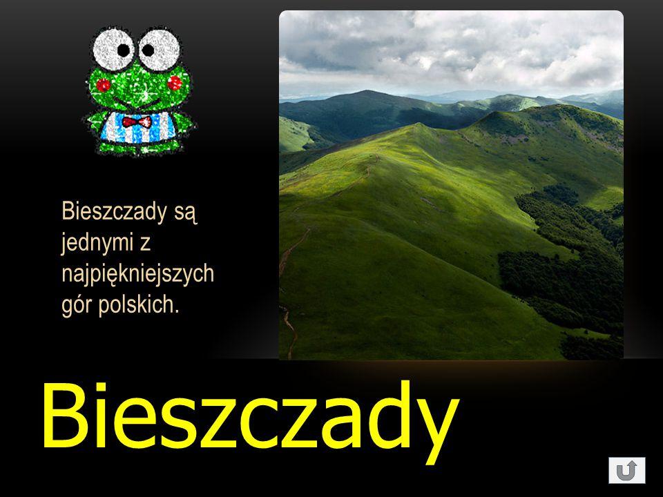 Bieszczady Bieszczady są jednymi z najpiękniejszych gór polskich.