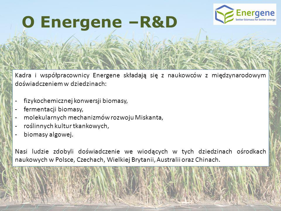 O Energene –R&D Kadra i współpracownicy Energene składają się z naukowców z międzynarodowym doświadczeniem w dziedzinach: