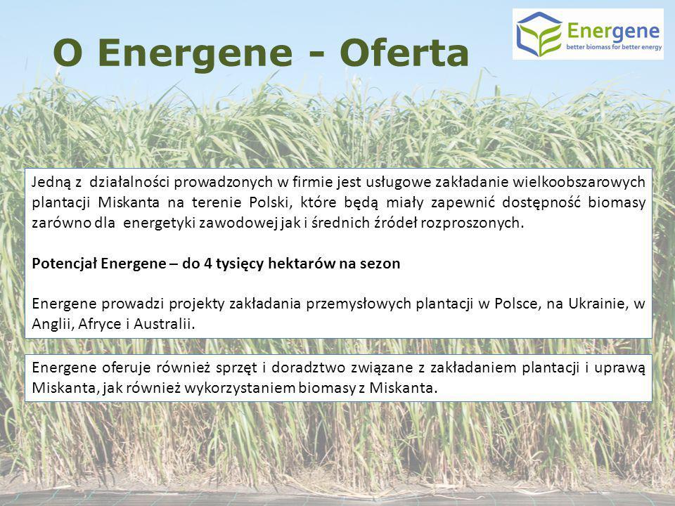 O Energene - Oferta