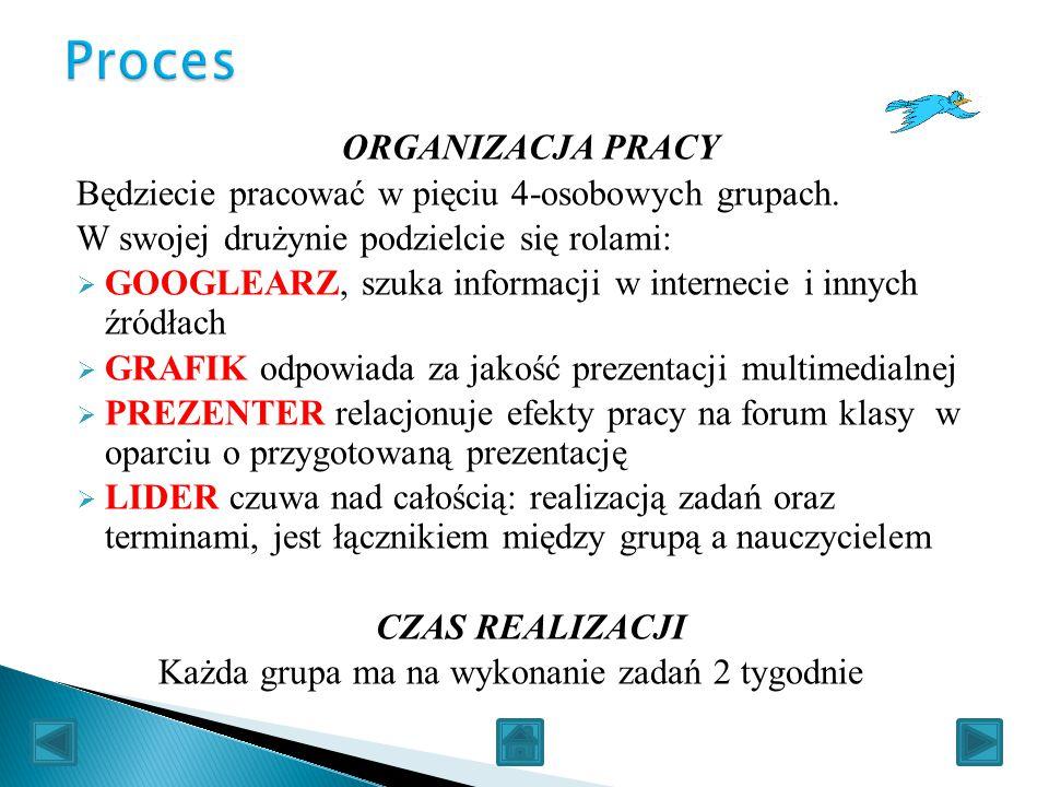 Proces ORGANIZACJA PRACY