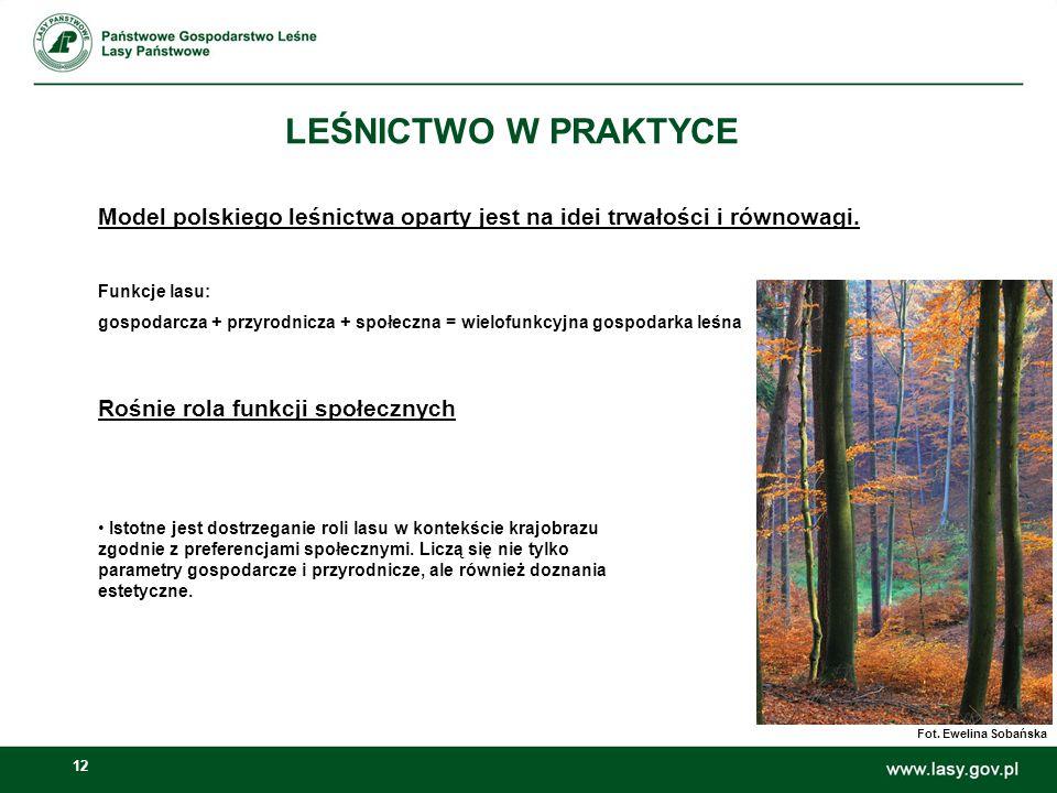 LEŚNICTWO W PRAKTYCE Model polskiego leśnictwa oparty jest na idei trwałości i równowagi. Funkcje lasu: