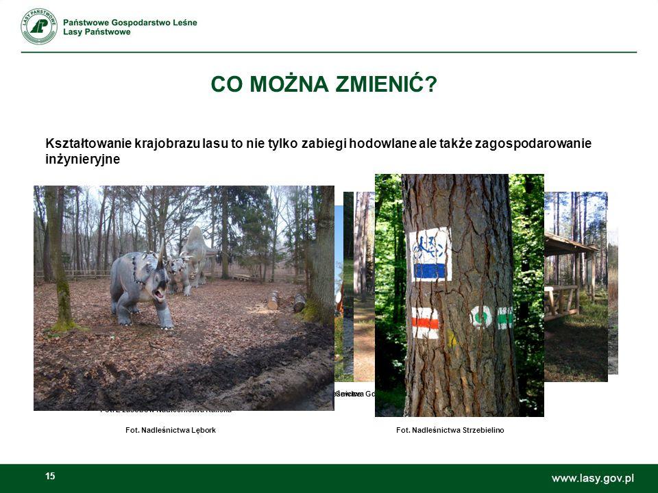 CO MOŻNA ZMIENIĆ Kształtowanie krajobrazu lasu to nie tylko zabiegi hodowlane ale także zagospodarowanie inżynieryjne.