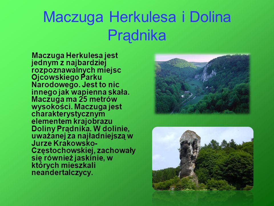 Maczuga Herkulesa i Dolina Prądnika